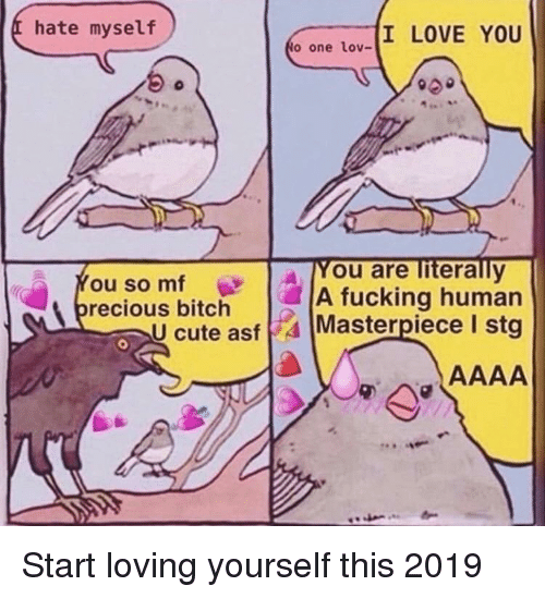 Bitch, Cute, and Fucking: hate myself  I LOVE YOU  to one lov-  A You are literally  A fucking human  cute asf4 Masterpiece I stg  ou so mf  recious bitch Start loving yourself this 2019