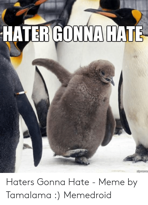haters gonna hate meme: HATER GONNA HATE  zpoeme Haters Gonna Hate - Meme by Tamalama :) Memedroid