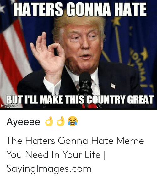 haters gonna hate meme: HATERS GONNA HATE  BUT I'LL MAKE THIS COUNTRY GREAT The Haters Gonna Hate Meme You Need In Your Life | SayingImages.com