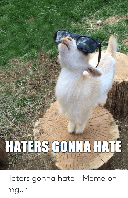 haters gonna hate meme: HATERS GONNA HATE  made on imgur