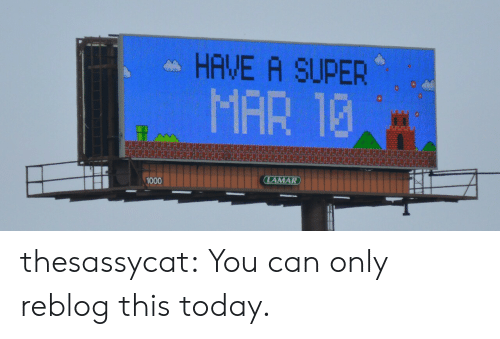 Tumblr, Blog, and Http: HAVE A SUPER  MAR 13  1000 thesassycat: You can only reblog this today.