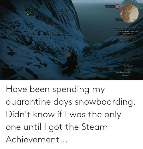 steam: Have been spending my quarantine days snowboarding. Didn't know if I was the only one until I got the Steam Achievement...