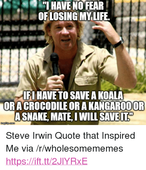 "Life, Steve Irwin, and Fear: HAVE NO FEAR  OFLOSING MY LIFE.  FI HAVE TO SAVE A KOALA  ORACROCODILE OR A KANGAR0OOF  ASNAKE, MATE IWILL SAVE <p>Steve Irwin Quote that Inspired Me via /r/wholesomememes <a href=""https://ift.tt/2JlYRxE"">https://ift.tt/2JlYRxE</a></p>"