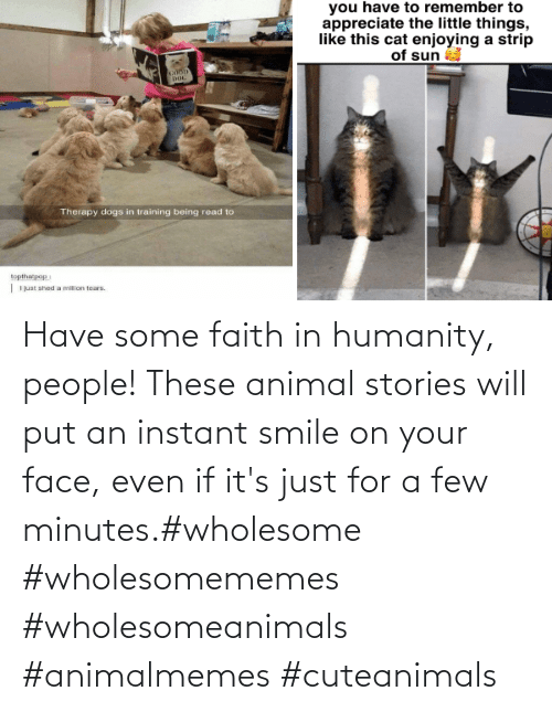 Smile: Have some faith in humanity, people! These animal stories will put an instant smile on your face, even if it's just for a few minutes.#wholesome #wholesomememes #wholesomeanimals #animalmemes #cuteanimals