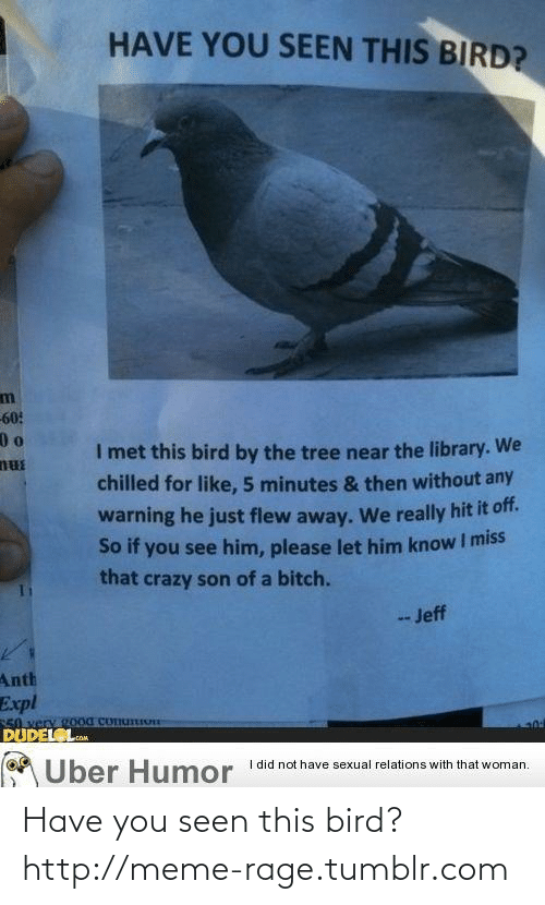 Him Please: HAVE YOU SEEN THIS BIRD?  60:  I met this bird by the tree near the library. We  nus  chilled for like, 5 minutes & then without any  warning he just flew away. We really hit it of.  So if you see him, please let him know I miss  that crazy son of a bitch.  -Jeff  Anth  Expl  S0 very 900d ConuIo  DUDEL L  cOM  I did not have sexual relations with that woman.  Uber Humor Have you seen this bird?http://meme-rage.tumblr.com