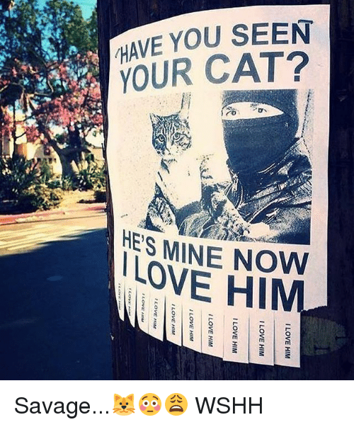 he's mine: HAVE YOU SEEN  YOUR CAT?  HES MINE NOW  LOVE HIM Savage...🐱😳😩 WSHH