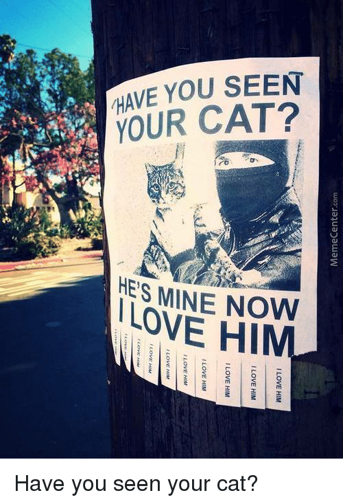 """he's mine: HAVE YOU SEEN  YOUR CAT?  ro  HE'S MINE NOW  I LOVE HIM  uo01a3uaDaLLIaW  I LOVE HIM  ET  10.0 ■ ILOVE HIM  I LOVE HIM  E"""". ILOVE HIM  LOVE HIM  Love Nwe  EU  LOVE HIM  WO Have you seen your cat?"""
