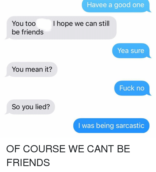 Friends, Relationships, and Texting: Havee a good one  I hope we can still  You too  be friends  Yea sure  You mean it?  Fuck no  So you lied?  I was being sarcastic OF COURSE WE CANT BE FRIENDS
