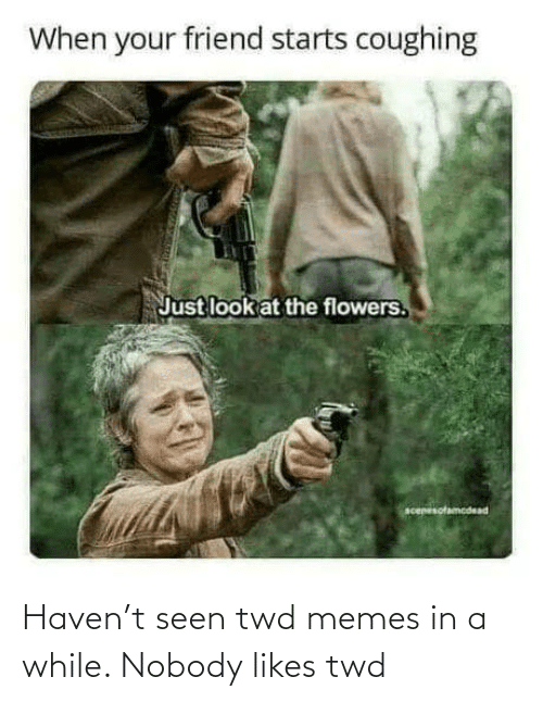 likes: Haven't seen twd memes in a while. Nobody likes twd