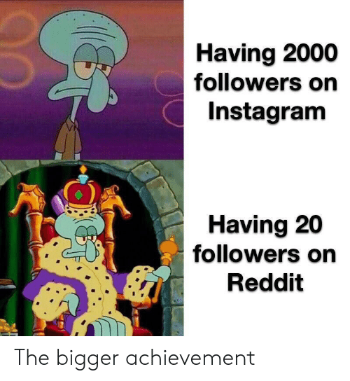 Instagram, Reddit, and  Achievement: Having 2000  followers on  Instagram  Having 20  followers on  Reddit The bigger achievement