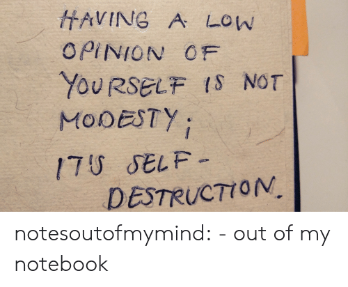 Notebook: HAVING A LOW  OPINION OF  YOURSELF IS NOT  MODESTY  17U SELF-  DESTRUCTION notesoutofmymind:  - out of my notebook