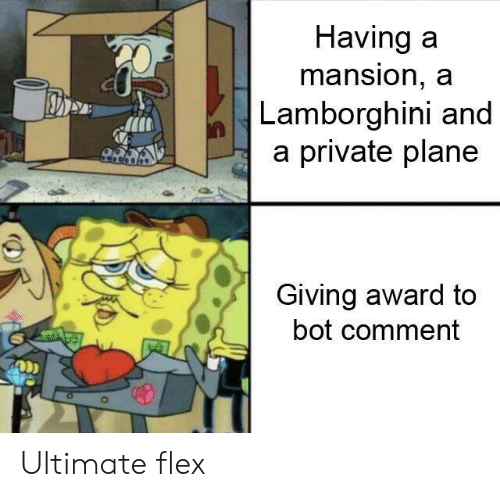 Mansion: Having a  mansion, a  Lamborghini and  a private plane  Giving award to  bot comment  ODD Ultimate flex