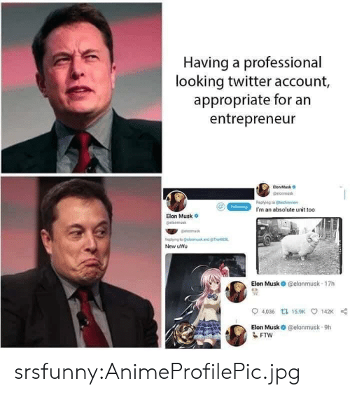 Tumblr, Twitter, and Blog: Having a professional  looking twitter account,  appropriate for an  entrepreneur  Eion Musk o  elonmus  Replying to echei  I'm an absolute unit too  Elon Musk  leplying to @land  New uWu  Elon Musk O @elonmusk 17h  0  04,036 tュ15.9K 142K  Elon Musk @elonmusk-9h srsfunny:AnimeProfilePic.jpg