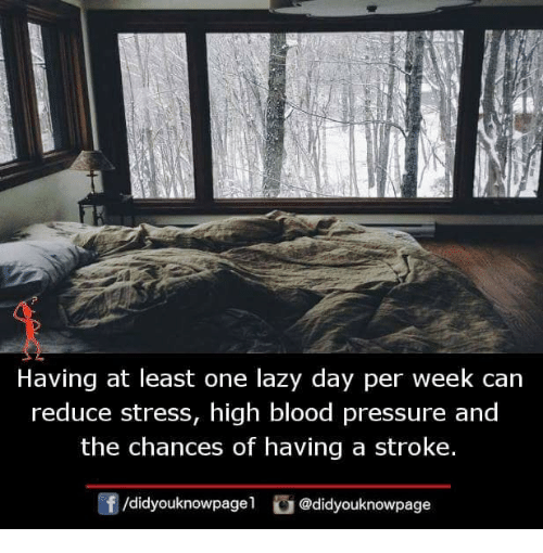 Lazy, Memes, and Pressure: Having at least one lazy day per week can  reduce stress, high blood pressure and  the chances of having a stroke.  f/didyouknowpagel @didyouknowpage