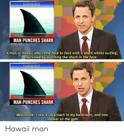 punches: HAWAII  MAN PUNCHES SHARK  A man in Hawaii who came face to face with a shark whilst surfing,  survived by punching the shark in the face.  HAWAI  MAN  PUNCHES SHARK  Meanwhile, I sawa cockroach in my bathroom, and now  I shower at the gym. Hawaii man