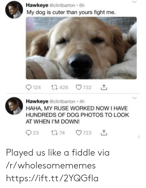 fight me: Hawkeye @clintbarton 6h  My dog is cuter than yours fight me.  t1 426  124  732  Hawkeye @clintbarton 4h  HAHA, MY RUSE WORKED NOWI HAVE  HUNDREDS OF DOG PHOTOS TO LOOK  AT WHEN I'M DOWN!  23  723  t 74 Played us like a fiddle via /r/wholesomememes https://ift.tt/2YQGfla