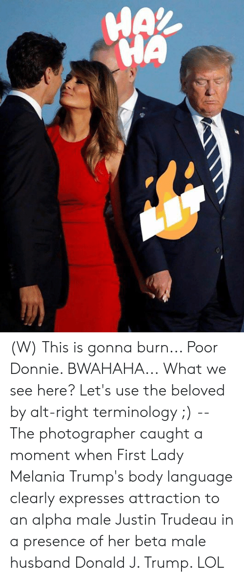 alpha: HAX  HA (W) This is gonna burn... Poor Donnie. BWAHAHA...  What we see here? Let's use the beloved by alt-right terminology ;) -- The photographer caught a moment when First Lady Melania Trump's body language clearly expresses attraction to an alpha male Justin Trudeau in a presence of her beta male husband Donald J. Trump.   LOL