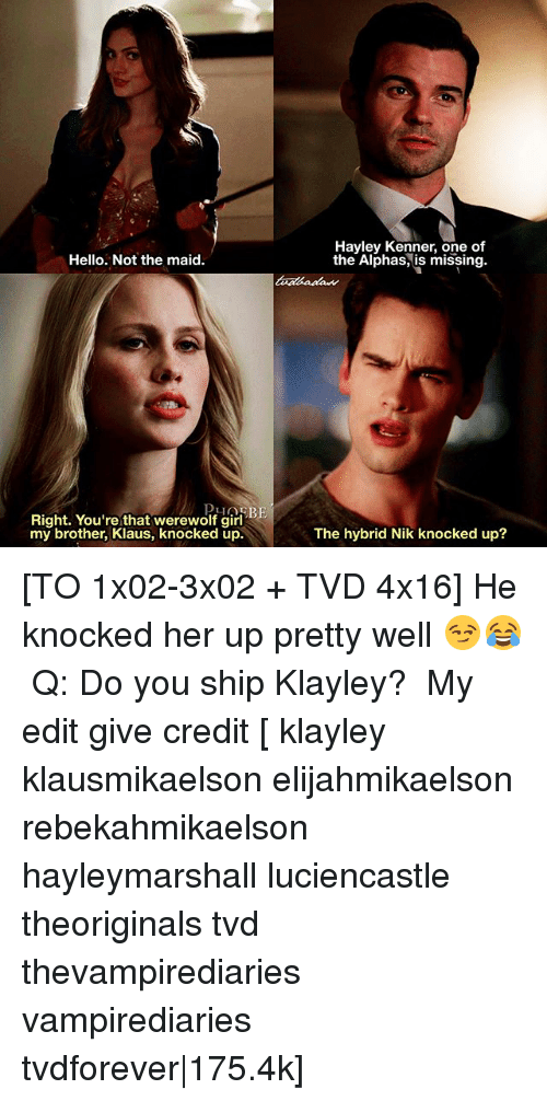 alphas: Hayley Kenner, one of  the Alphas, is missing.  Hello. Not the maid  Right. You're that werewolf girl  my brother, Klaus, knocked up.  The hybrid Nik knocked up? [TO 1x02-3x02 + TVD 4x16] He knocked her up pretty well 😏😂 ⠀ Q: Do you ship Klayley? ⠀ My edit give credit [ klayley klausmikaelson elijahmikaelson rebekahmikaelson hayleymarshall luciencastle theoriginals tvd thevampirediaries vampirediaries tvdforever 175.4k]
