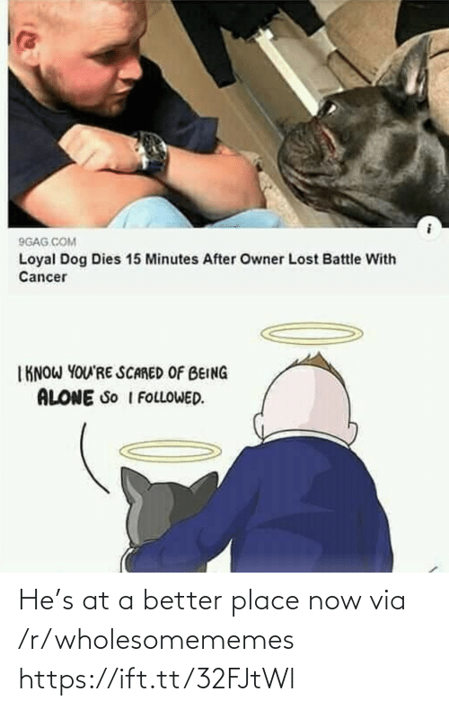 Better Place: He's at a better place now via /r/wholesomememes https://ift.tt/32FJtWl