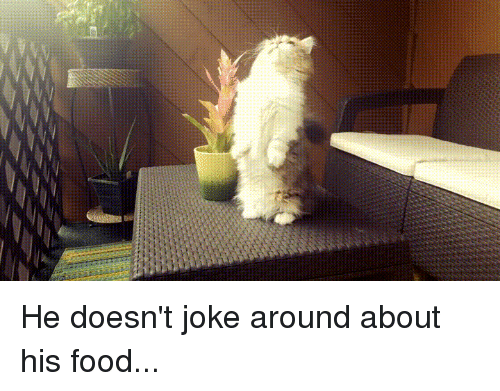 Food, Joke, and  Around: He doesn't joke around about his food...