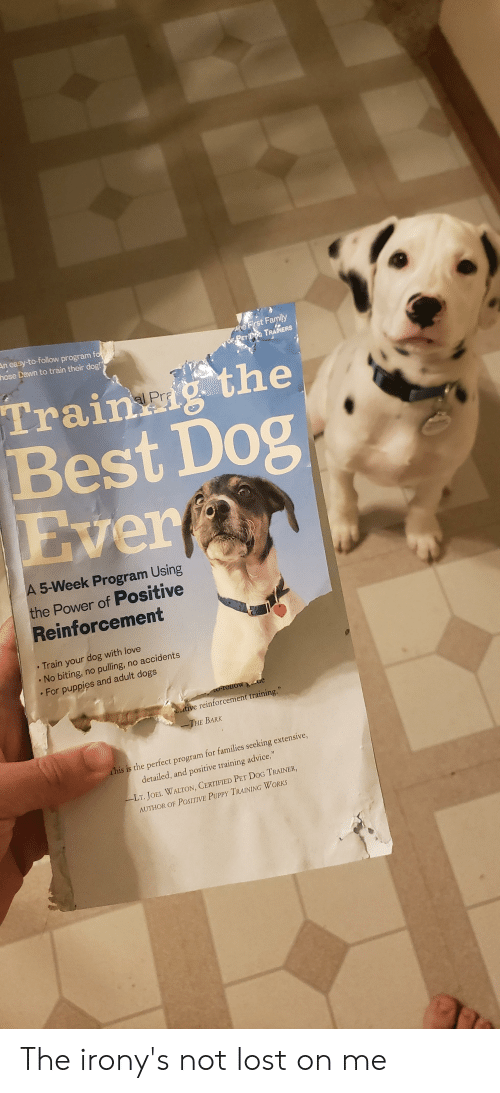 """Advice, Dogs, and Family: he First Family  Of PET DG TRAINERS  An easy-to-follow program fo  hose Dawn to train their dog!""""  Traing the  Best Dog  Ever  A 5-Week Program Using  the Power of Positive  Reinforcement  Train your dog with love  No biting, no pulling, no accidents  For puppies and adult dogs  O-IOIOW ue  utive reinforcement training.""""  -THE BARK  This is the perfect program for families seeking extensive,  detailed, and positive training advice,""""  -LT. JOEL WALTON, CERTIFIED PET DoG TRAINER,  AUTHOR OF POSITIVE PUPPY TRAINING WORKS The irony's not lost on me"""