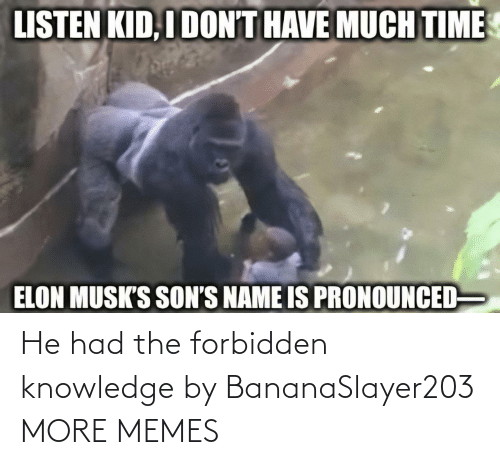 Knowledge: He had the forbidden knowledge by BananaSlayer203 MORE MEMES