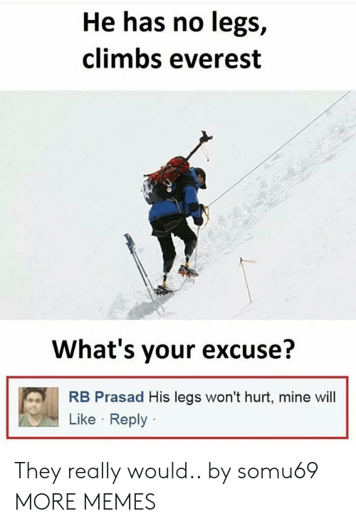 Heing: He has no legs,  climbs everest  What's your excuse?  RB Prasad His legs won't hurt, mine wil  Like Reply They really would.. by somu69 MORE MEMES