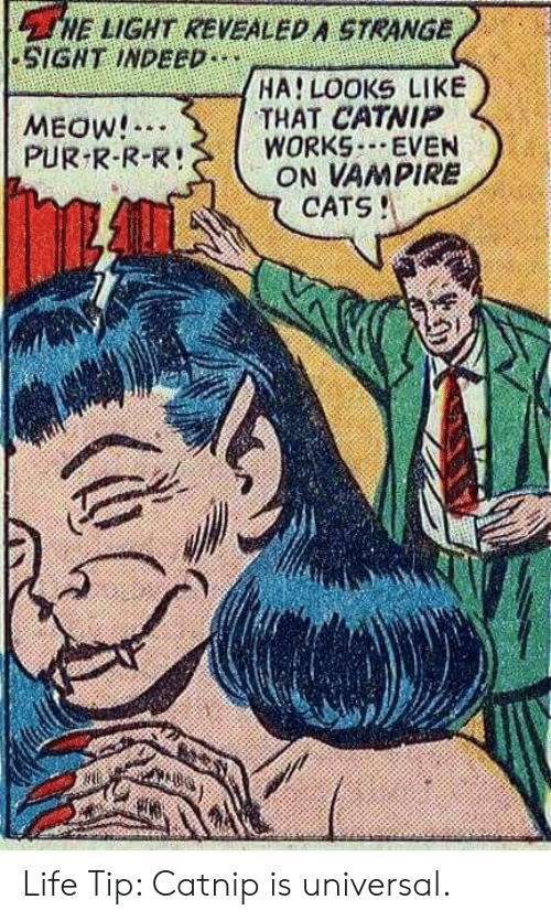 meow: HE LIGHT REVEALED A STRANGE  SIGNT INDEED  HA LOOKS LIKE  THAT CATNIP  WORKS EVEN  ON VAMPIRE  CATS!  MEOW!  PUR R-R-R! Life Tip: Catnip is universal.