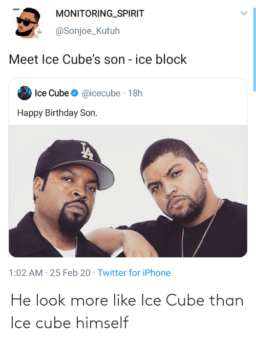 Ice Cube: He look more like Ice Cube than Ice cube himself