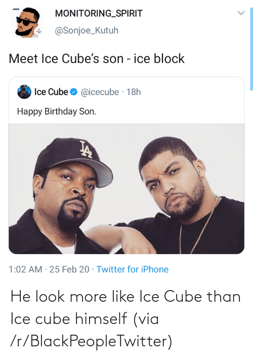 Ice Cube: He look more like Ice Cube than Ice cube himself (via /r/BlackPeopleTwitter)