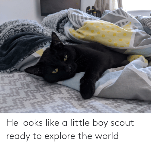explore: He looks like a little boy scout ready to explore the world