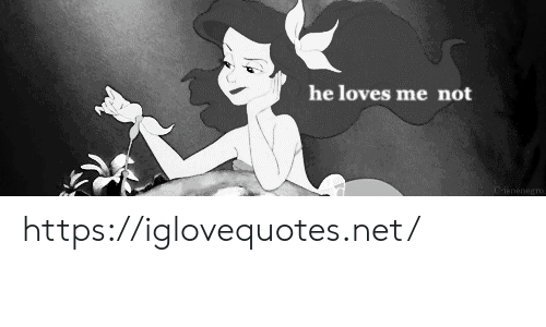 He Loves: he loves me not  Cienenegro. https://iglovequotes.net/