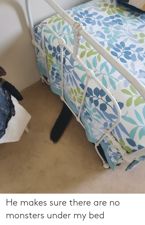 sure: He makes sure there are no monsters under my bed