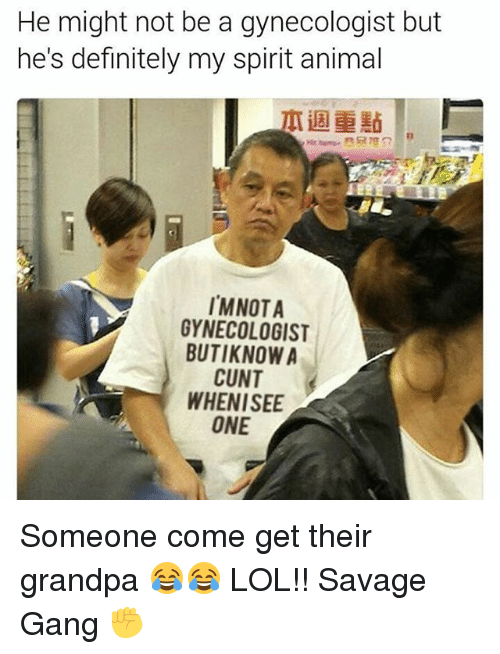 Definitely, Lol, and Memes: He might not be a gynecologist but  he's definitely my spirit animal  IMNOTA  GYNECOLOGIST  BUTIKNOW A  CUNT  WHEN ISEE  ONE Someone come get their grandpa 😂😂 LOL!! Savage Gang ✊️