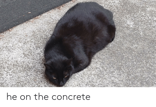 concrete: he on the concrete