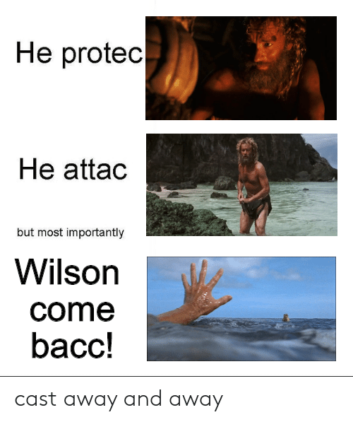 Bacc: He protec  He attac  but most importantly  Wilson  come  bacc! cast away and away