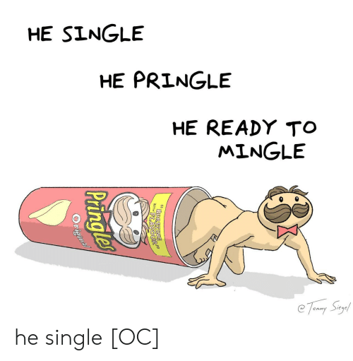ready to mingle: HE SINGLE  HE PRINGLE  HE READY TO  MINGLE  0 he single [OC]
