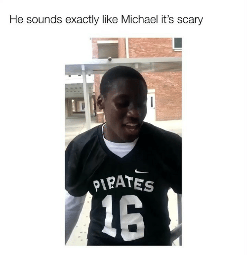 Memes, Michael, and Pirates: He sounds exactly like Michael it's scary  PIRATES  15