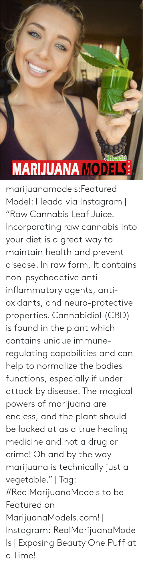 """neuro: Headd  MARJUANA S  MODEL marijuanamodels:Featured Model: Headd via Instagram 