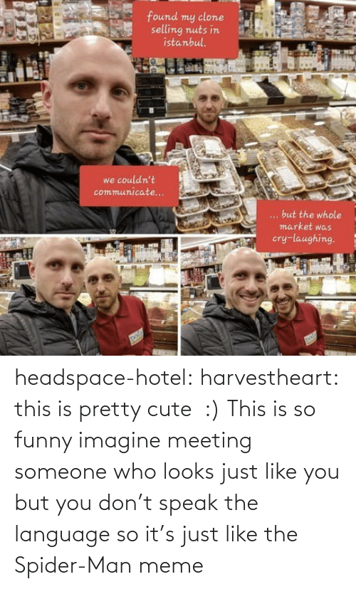 So Funny: headspace-hotel: harvestheart: this is pretty cute  :)   This is so funny imagine meeting someone who looks just like you but you don't speak the language so it's just like the Spider-Man meme