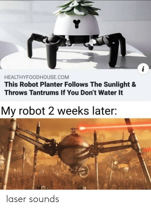 Weeks: HEALTHYFOODHOUSE.COM  This Robot Planter Follows The Sunlight &  Throws Tantrums If You Don't Water It  My robot 2 weeks later: laser sounds