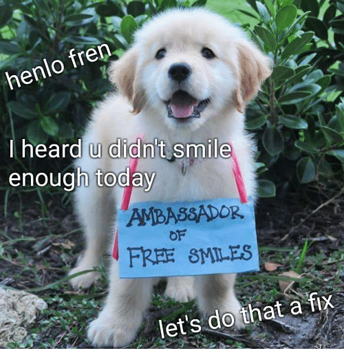 Free, Smile, and Today: heard u didn't smile  enough today  AMBASSADOR  OF  FREE SMILES  let's do that a fix
