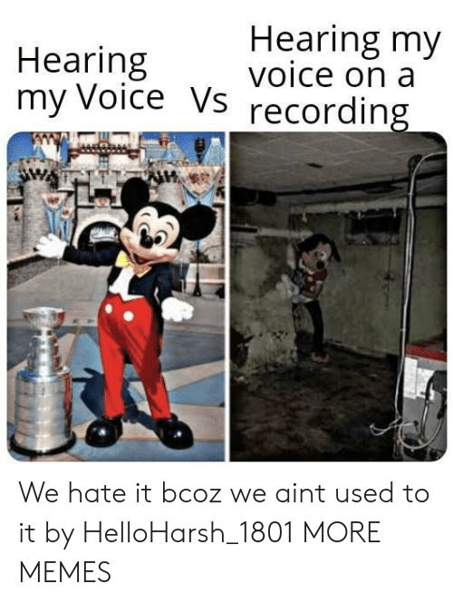 Recording: Hearing my  voice on a  Hearing  my Voice Vs  recording We hate it bcoz we aint used to it by HelloHarsh_1801 MORE MEMES