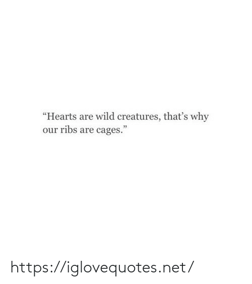 "Thats Why: ""Hearts are wild creatures, that's why  our ribs are cages."" https://iglovequotes.net/"