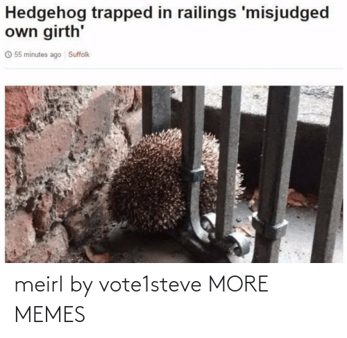 Hedgehog: Hedgehog trapped in railings 'misjudged  own girth'  O 55 minutes ago Suffolk meirl by vote1steve MORE MEMES