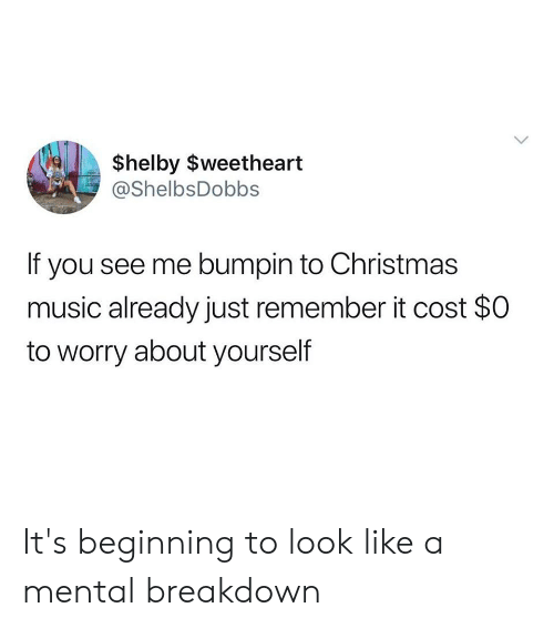 Worry About Yourself: $helby $weetheart  @ShelbsDobbs  If you see me bumpin to Christmas  music already just remember it cost $0  to worry about yourself It's beginning to look like a mental breakdown