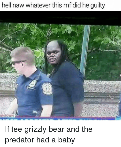 Didly: hell naw whatever this mf did he guilty  WNTOWN If tee grizzly bear and the predator had a baby