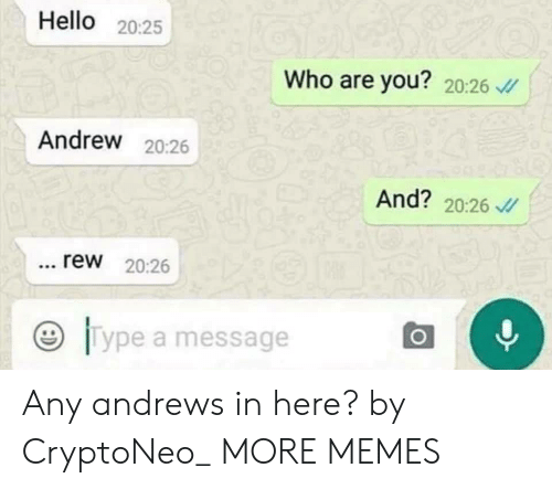rew: Hello 20:25  Who are you? 20:26  Andrew 20:26  And? 20:26  rew 20:26  ジ11 ype a message Any andrews in here? by CryptoNeo_ MORE MEMES