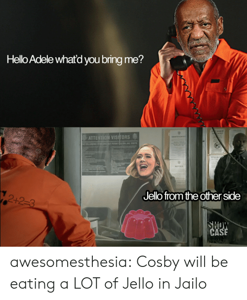 Adele: Hello Adele whatd you bring me?  ATTENTION VISITORS  Jelo fromthe other side  12+2-3 awesomesthesia:  Cosby will be eating a LOT of Jello in Jailo