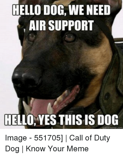 Hello Dog We Need Air Support Hello Yes This Is Dog Image 551705